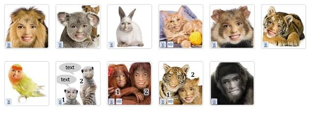 Funny.Pho.to-montagem-fotos-engracada-animal