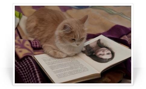 2 fotos colocadas nas páginas abertas de um livro.