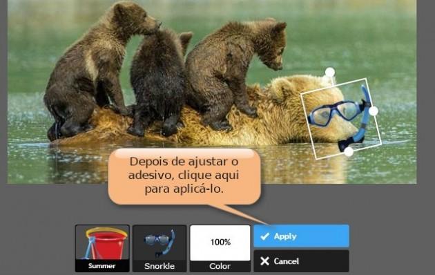 introduzir_adesivo