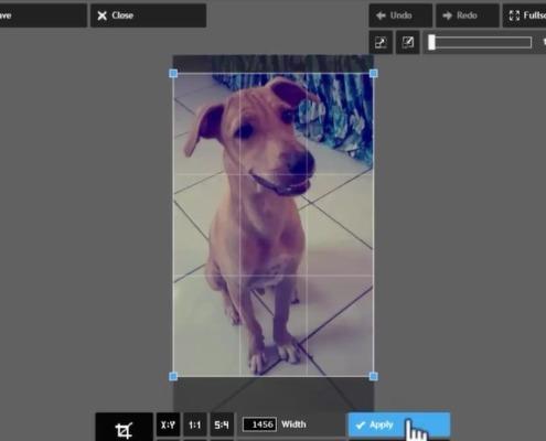 cortar fotos online